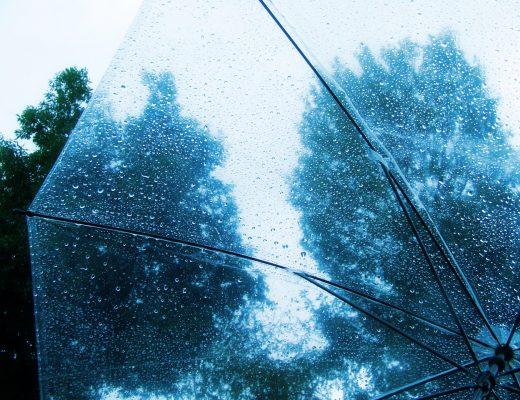 梅雨の時期のデートスポットは?